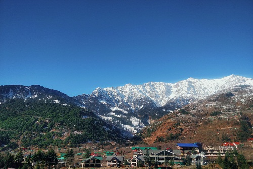 Palampur Travel Package